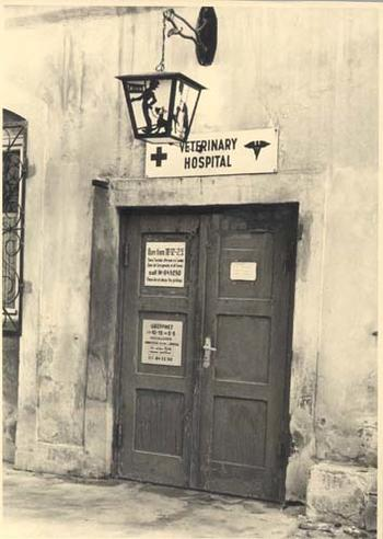 veterinary_hospital
