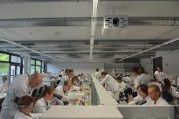 Veterinärmedizin Studium Berlin